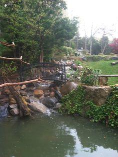 Angle three Ponds, Aquarium, Aquarius, Fish Tank, Pools