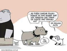 Diálogo canino.  Fuente: Desde la web.