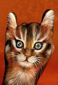 cat hand....