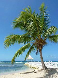 #amazing #beachlife