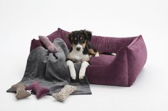Hundesofa Box Bed Mystic purple aus der Manufaktur DITC