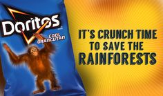 Doritos, it's crunch time to adopt a zero deforestation policy You won't believe what's in Doritos!
