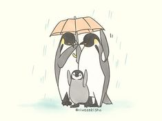 Penguin Drawing, Drawing Cartoon Faces, Penguin Art, Pet Anime, Anime Animals, Cute Animals, Cute Animal Drawings, Kawaii Drawings, Cute Drawings