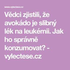 Vědci zjistili, že avokádo je slibný lék na leukémii. Jak ho správně konzumovat? - vylectese.cz