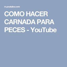 COMO HACER CARNADA PARA PECES - YouTube