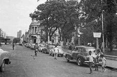 Maria do Resguardo fotos antigas e raras de Juiz de Fora: Av. Rio Branco, parque Halfeld, em outubro de 1964 (foto autoria provável: Roberto Dornellas ou Jorge Couri).