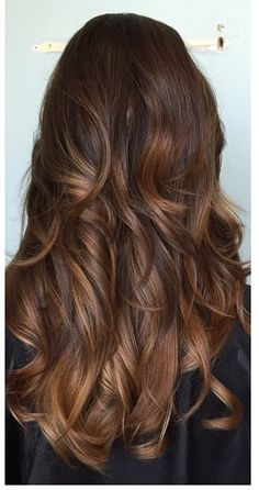Perfect Shade of Brown with highlights