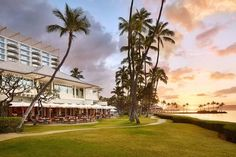 Where to stay on Oahu, as recommended by a local! A guide to the best hotels on Waikiki Beach, in Honolulu, on the North Shore, and in Ko Olina. Hotels And Resorts, Best Hotels, Honolulu Restaurants, Hawaii Hotels, Visit Hawaii, Waikiki Beach, Travel And Leisure, Oahu, Luau Wedding
