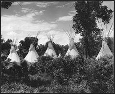 Tipis, Crow Reservation, Montana