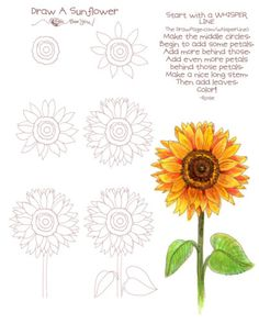 New flowers drawing sunflower art lessons ideas Rose Drawing Simple, Simple Flower Drawing, Flower Drawing Tutorials, Sunflower Drawing, Sunflower Art, Drawing Flowers, Simple Flowers To Draw, Simple Flower Painting, Flower Drawings