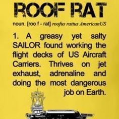 it'll get your heart beating! Us Navy Aircraft, Navy Aircraft Carrier, Military Aircraft, Military Humor, Navy Military, Military Veterans, Military Life, Go Navy, Navy Mom