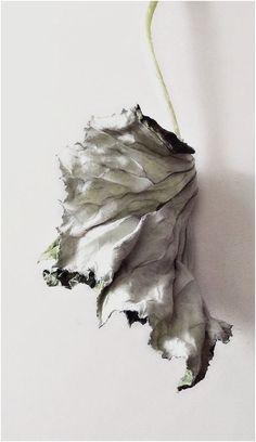 ©yama-bato, 2013........http://www.pinterest.com/mntipton/artsy-things/