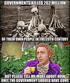 If the government says you don't need a gun, YOU NEED A GUN. Conservative Memes, 2nd Amendment, Pro Gun, Gun Rights, Gun Control, Conspiracy, Truth Hurts, Liberal Logic, Political Views