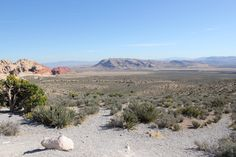 Red rock Las Vegas, Nevada. A beautiful park where you can scale mountain sides, hike, ride bikes, or just drive and enjoy the sights.