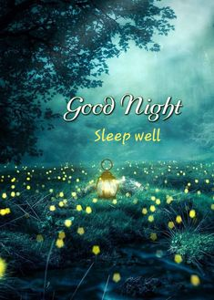 Good Night Greetings, Good Night Messages, Good Night Wishes, Good Night Quotes, Good Night Sleep Well, Good Morning Good Night, Day For Night, Good Day, Photo Background Images