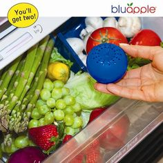 BLUEAPPLE FRUIT AND PRODUCE KEEPER | Get Organized