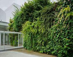 Musée du 21eme siècle, Green Bridge   Mur Vegetal Patrick Blanc