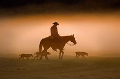Florida Cowboy mist