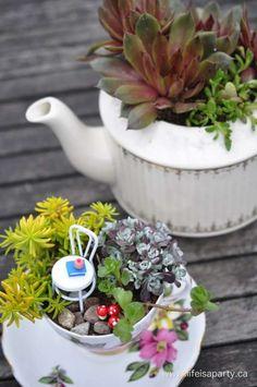 12 idées créatives de jardins miniatures à faire soi-même