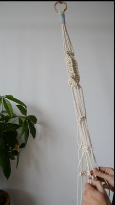 Here's a video about how to make incredible plant hanger by yourself. Macrame Plant Hanger Patterns, Macrame Plant Hanger Diy, Free Macrame Patterns, Macrame Hanging Planter, Hanging Plants, Macrame Design, Macrame Projects, Plant Hangers, Air Plants