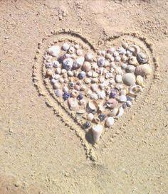 Love Sea Shells