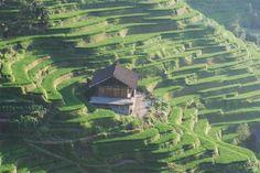 China Hunan beautiful terraced