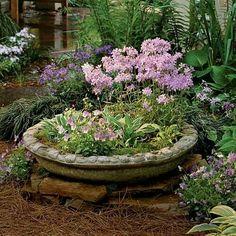 Top half of a birdbath repurposed as a planter