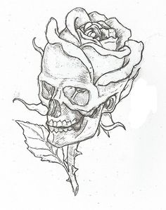 Simple Skulls and Roses Drawings