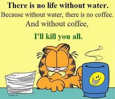 Garfield Quotes, Garfield And Odie, Funny Picture Quotes, Funny Pictures, Funny Quotes, Funny Puns, Funny Cartoons, Funny Stuff, Garfield Wallpaper