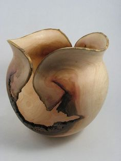 Large Hollow-form- wood turning by Gary Bills- Southern Highland Craft Guild