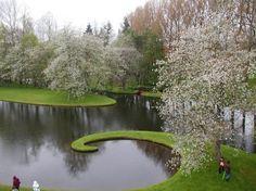 Garden of Cosmic Speculation van Portrack House bij Dumfries in Schotland, ontworpen door de Amerikaanse landschapsarchitect Charles Jencks. Niet een overdadige plantengroei domineren deze tuinen, maar wiskundige formules en wetenschappelijke fenomenen.
