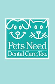 Dental card for your pets!
