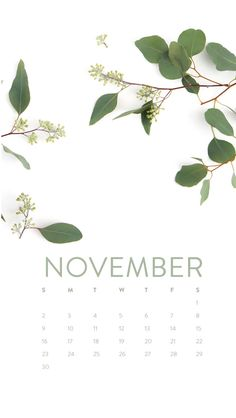 Free desktop calendar + iPhone wallpapers | ashleeproffitt.com/blog
