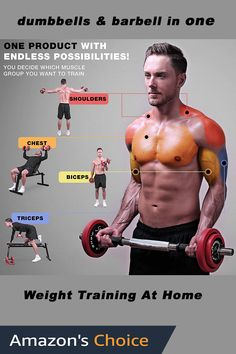 Weight training at home is a convenient and inexpensive way to get fit and lose weight. You don't need an expensive gym membership to gain muscle. This is a great gift for a boyfriend who wants to workout at home Birthday Gifts For Husband, Biceps And Triceps, Gym Membership, Muscle Groups, Gain Muscle, Weightlifting, Barbell, Weight Training, Boyfriend Gifts