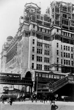 Construction of liver building
