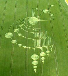 Crop circles | Les crop circles vus par la science