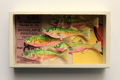 Art box:diorama réalisé dans une boîte d'allumette.Les poissons. Plus