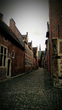 Alleys in the beguinage in Leuven, Belgium.