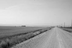 Lewistown, Montana, USA, Black & White, Landscape,Dirt Road,Big Sky,Open space,