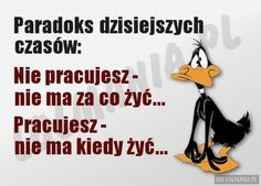 Paradoks dzisiejszych czasów Jolie Phrase, Weekend Humor, Serious Quotes, Ted Talks, Motto, Cool Words, Sarcasm, Positive Quotes, Haha