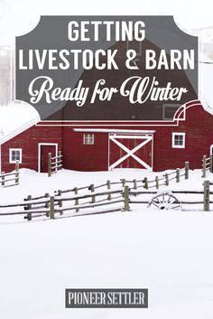Getting Livestock and Barn Ready for Winter