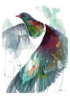 Rachel Walker — Watercolour Wing (Kereru)