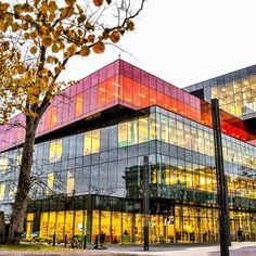 Calling all book worms! Visit these architecturally stunning buildings across Canada and immerse yourself in culture. Beautiful Library, Libraries, Book Worms, Exploring, Travelling, Things To Do, Most Beautiful, Multi Story Building, Canada
