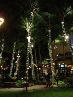 #Waikiki #Oahu #Hawaii