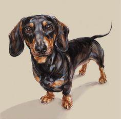 Dachshund art print  Ltd Ed Collectable by paintmydog on Etsy, $95.00