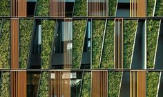 Vertical Living Gallery by Shma / Living Wall project in Bangkok, Thailand (3)