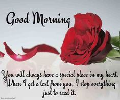 Make your girlfriend more beautiful with this best good morning wishes and bring a smile on her face. Send this Good Morning messages to your girlfriend. Good Morning Wishes Love, Flirty Good Morning Quotes, Good Morning Sexy, Good Morning Snoopy, Romantic Good Morning Messages, Inspirational Good Morning Messages, Special Good Morning, Morning Greetings Quotes, Good Night Quotes