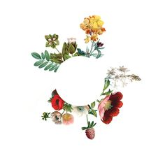 Floral-Wreath.png