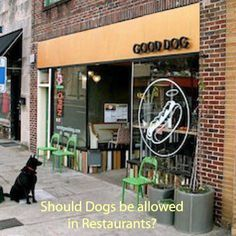 Should dogs be allowed in restaurants with their owners? What do you think?   #dogsofinstagram #dogs #restaurants #dogsallowed #nodogsallowed #bylaws #foodsafety #doglover #dogsarefamily #dogbehavior
