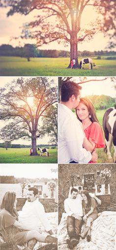 haha of course my eye goes to the horse first!   Farm / Horse engagement photography